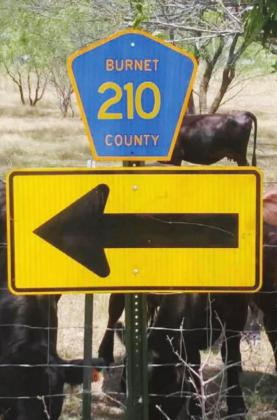 County road signs like this one Road 210 have been stolen on a daily basis, Precinct 2 Commissioner Damon Beierle said. Hill Country Area Crime Stoppers Inc. is offering a reward for information leading to an arrest and conviction. Contributed
